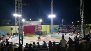Guy Survive 3 Cobra Snakes In Circus