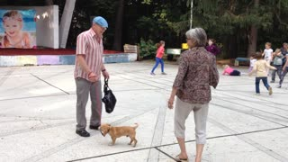 Incendiary dance of the grandfather and with the dog  - Video