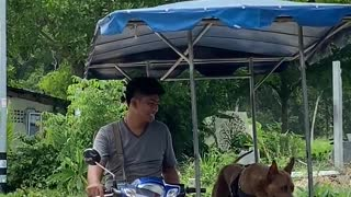 Man Sitting on Motorcycle While Petting His Dog
