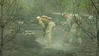 Ukraine plagued by forest fires - Video