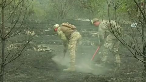 Ukraine plagued by forest fires