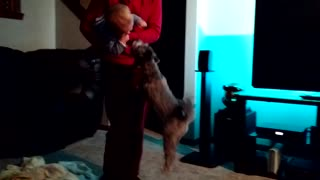 Cute baby laughs at jumping puppy - Video