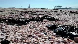 Israeli beaches hit by mystery oil spill