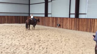 When It Comes To Riding Horses Size & Years Doesn't Matter - Video