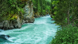 Relax Library: Video 74.Forest Green River