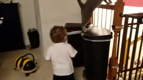 Funny Little Boy Chasing and Laughing at Russian Blue Cat