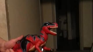 PUPPIES PLAYING WITH DINOSAUR TOY