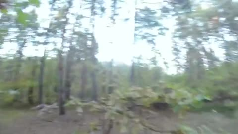 Teen chased by bear on his bike; Wait until the end!