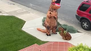 Clever person dresses in T-Rex costume to walk their dog safely