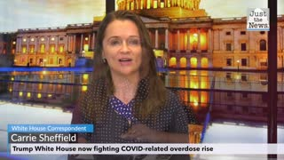 Trump White House led historic drop in opioid deaths, now fighting COVID-related overdose rise