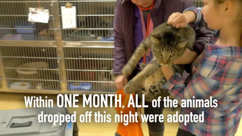 Spokanimal Shelter saves 45 animals in one night!