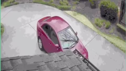 Door dash delivery woman forgets to park her car, car rolls back into tree