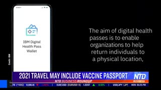 Vaccine Travel passport??