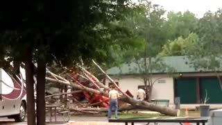 Tractor vs. Tree - Video