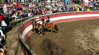 Rodeo show in Chile
