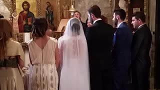 Bat flies into church during wedding ceremony - Video