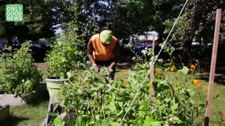 Rosie's Place Community Garden Rebuilds Homeless Women's Lives - Video