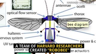 Micro-Robot Could Replace Bees - Video