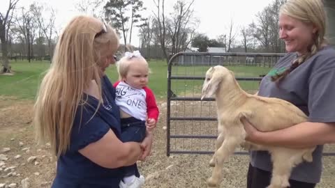 Toddler Has A Hilarious Conversation With A Baby Goat