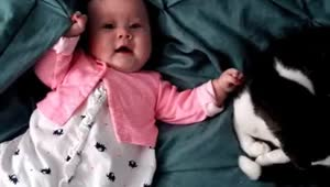 Adorable baby loves to pet her cat - Video