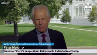 Navarro: 'there's no question' China wants Biden to beat Trump