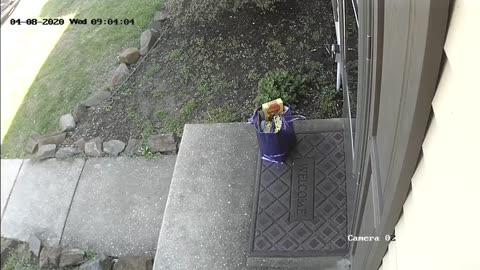 Porch Pirate Caught Red Handed