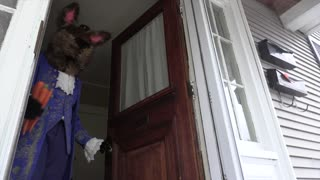Bunny Dogs Trick or Treat on Easter Funny Dogs Maymo & Potpie vs Giant Bunnies