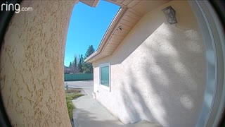 Thieves Caught and Confronted by Doorbell Camera