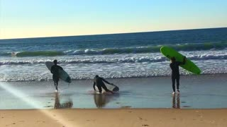 Three guys running to water with surfboard middle guy trips and falls into sand beach