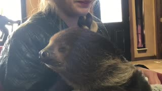 Surprised by Sloth