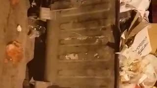 Сontainers filled with garbage in Prilep - Video