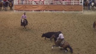 Take a look inside the 2016 cutting horse futurity - Video