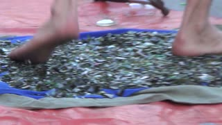 Street performer walks on broken glass, stands on nails! - Video