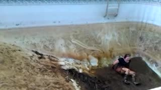 Woman Can't Escape Gross Muddy Swimming Pool - Video