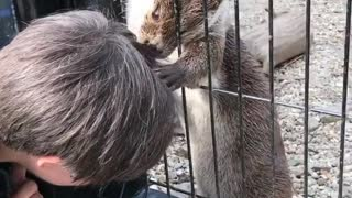 Otter gives kid relaxing scalp massage