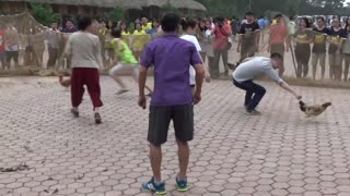Vietnam countryside folk games - cacth the chicken - Video
