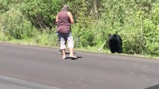 Don't Approach the Bears - Video