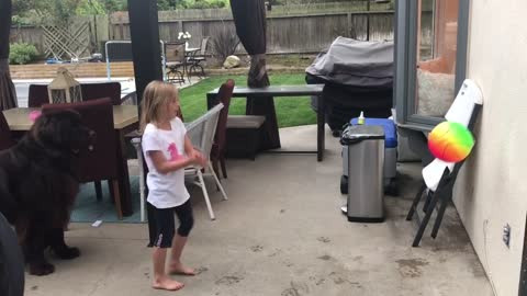 Little Girl And Giant Dog Play Handball Together