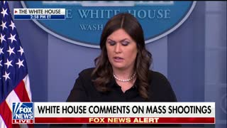 Sarah Sanders Touts Trump's Crime 'Crackdown' In Response to Question About Mass Shootings - Video