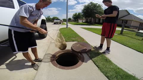 Teenager Fishes Giant Mudcat Out Of Storm Sewer
