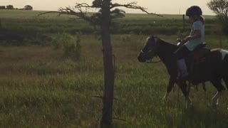 Girl on horse rides into tree - Video