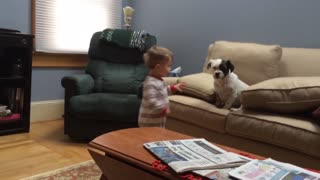 Little Boy Tries To Teach Lazy Dog How To Fetch