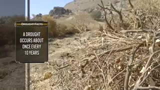 Protect the Harvest - California Water Crisis 2015