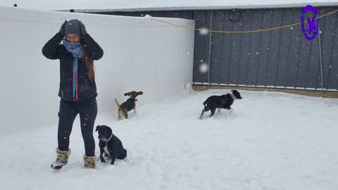 Snow day for the Littles & Pups at Coolwag.