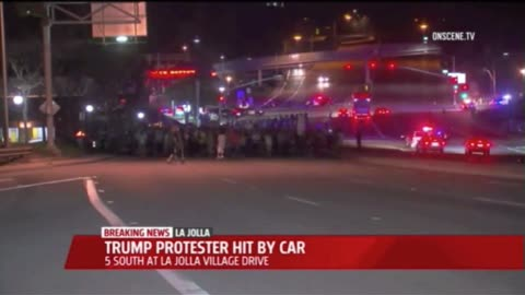 Student Sues University Because She Blocked Traffic and Got Hit by Car During Anti-Trump Protest