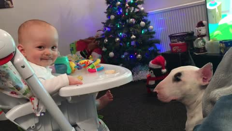 Adorable baby can't stop laughing at hungry doggy