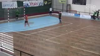 Unbelievable soccer goal - Video