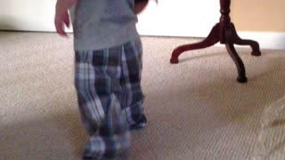 Toddler walking with box over head results in expected ending - Video