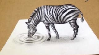 Artist creates epic 3D Zebra illusion - Video