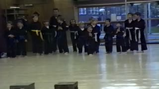 Adorable Kid Shows That Kung Fu Hurts - Video